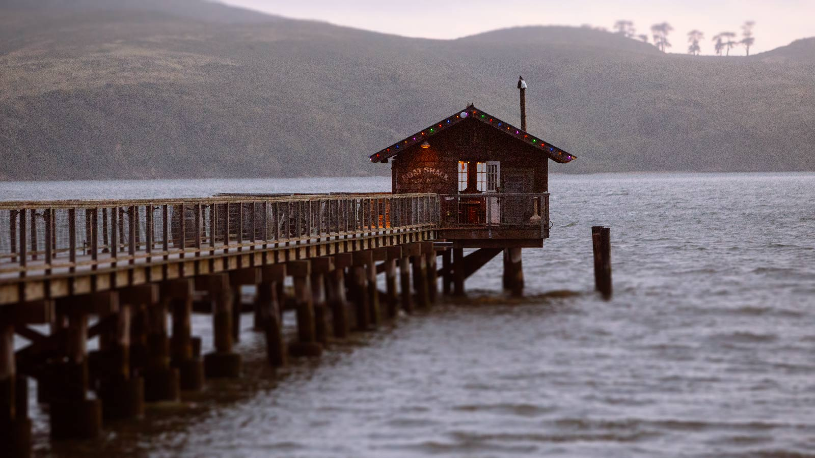 Tomales Bay California photographer