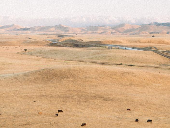 travel photography california hills landscape