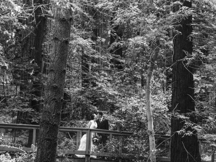Redwoods Wedding Sanborn park saratoga California