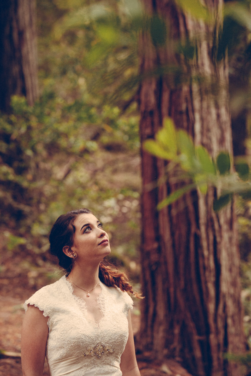 Sanborn park saratoga California Redwoods wedding